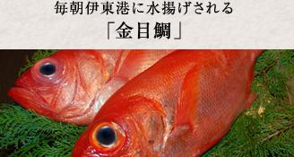 毎朝伊東港に水揚げされる「金目鯛」