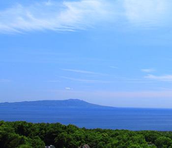 海と伊豆七島を一望する好立地