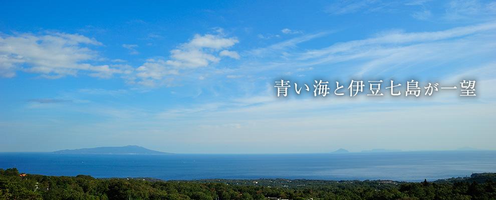 青い海と伊豆七島が一望